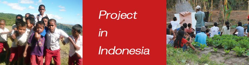 インドネシア事業